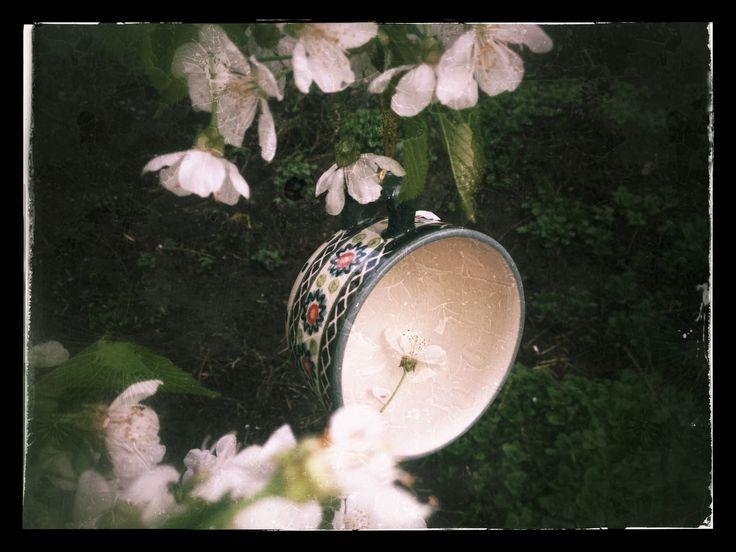 In the garden #посударучнойработы #керамикаручнойработы #посуда #ceramics #pottery #polishpottery ceramic tableware | pottery | polish pottery | boleslawiec | посуда | керамическая посуда | польская керамика | польская посуда | болеславская керамика | керамика