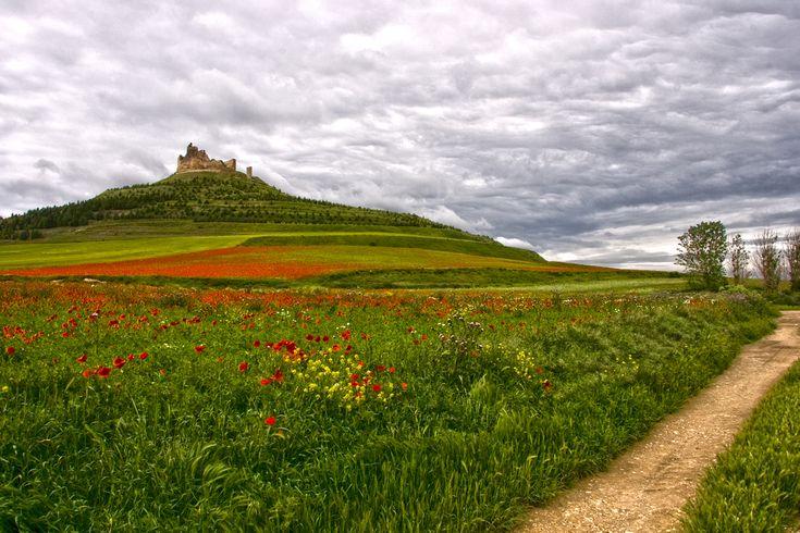 Castillo de Castrojeriz #Burgos, #CaminodeSantiago #LugaresdelCamino