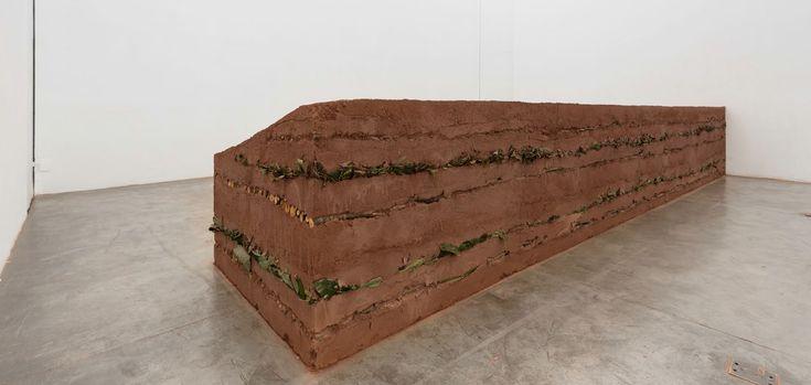 Gabriela Albergaria - Couche Sourde II 2010 / 2014. soil, trunks and leaves 120 x 90 x 610 cm