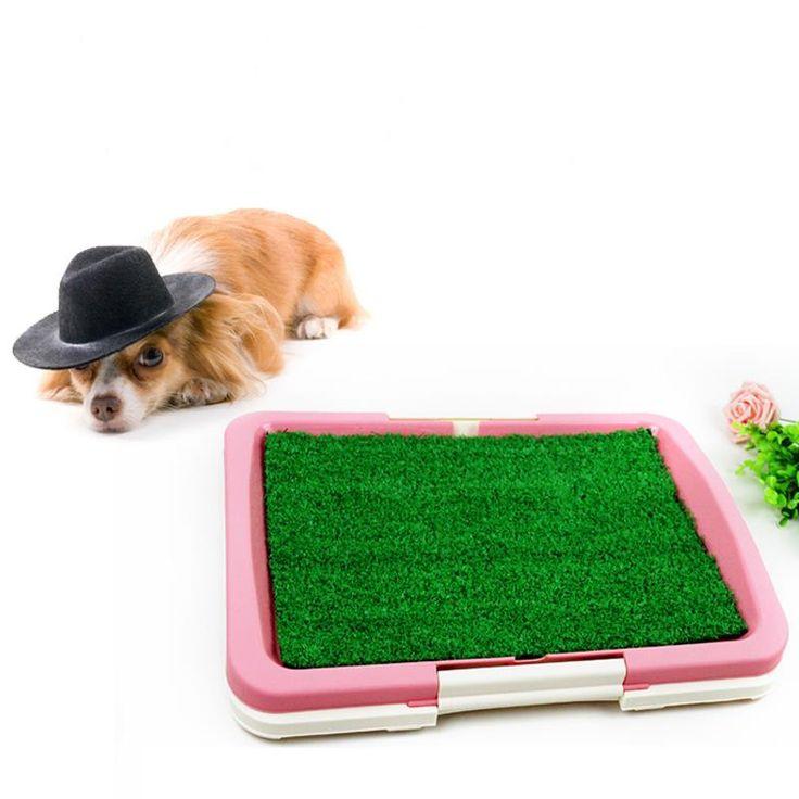 Dog Has Diarrhea On Rug: 17 Best Ideas About Dog Toilet On Pinterest