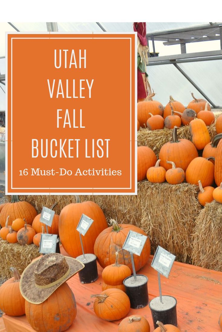 15 Activities To Add To Your Utah Valley Fall Bucket List In 2020 Fall Bucket List Utah Activities Autumn Activities