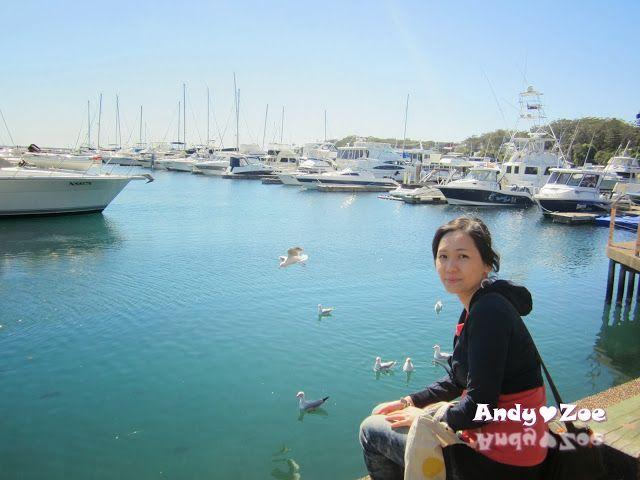 Andy與Zoe的旅行紀錄: 雪梨之旅:Port Stephens(史蒂芬港)的 Nelson Bay 搭遊艇出海賞海豚(Dolphin Watch)