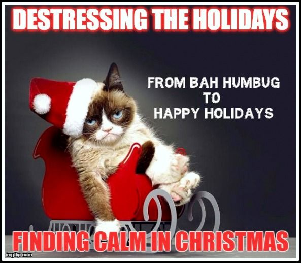 My tips and tricks to surviving the stressful holiday season with some humour, patience and your sanity intact.  #christmas #stress #bahhumbug