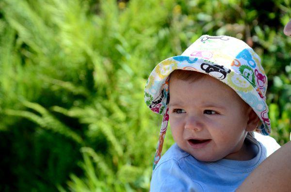 Oriol en Selva Negra Diez consejos para viajar a la Selva Negra