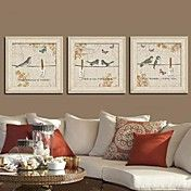 One Two Three Birds  Framed Canvas Print Set ... – AUD $ 147.56