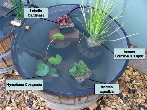 25 best ideas about bache bassin on pinterest bache for Bache a bassin