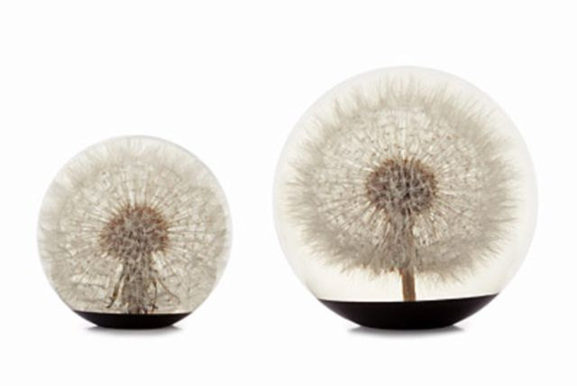 1000 Ideas About Dandelion Paperweight On Pinterest