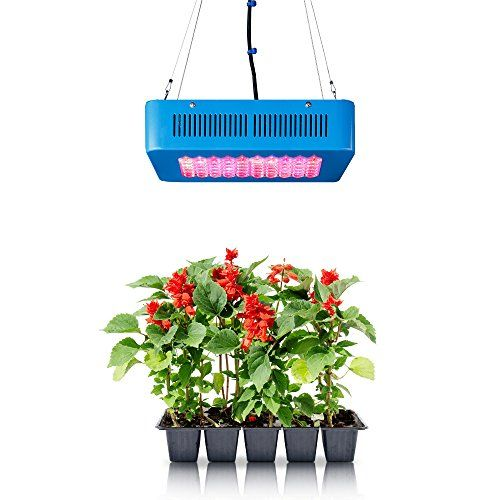 Special Offers - Sandalwood 150W Dual Mode LED Grow Light for Hydroponic Garden and Greenhouse Use  Dual Grow / Bloom Spectrum Review - In stock & Free Shipping. You can save more money! Check It (October 10 2016 at 01:39AM) >> http://growlightusa.net/sandalwood-150w-dual-mode-led-grow-light-for-hydroponic-garden-and-greenhouse-use-dual-grow-bloom-spectrum-review/