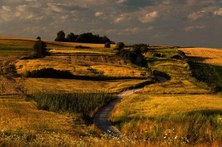 Kraina Łagodności : Moje Roztocze.. © Marek Goch