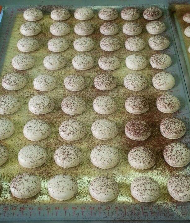 Tiramisu Macarons #macarons # macaroons www.amuseprivatecaterers.co.uk