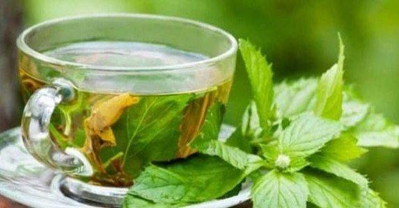 Reem Abulkas Green Tea Mints Tea Herbal Treatment