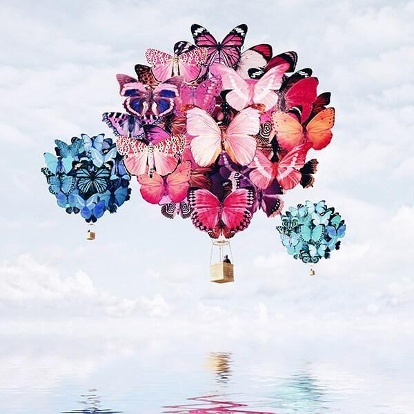 Balão de borboleta. Foto manipulação de Luisa Azevedo