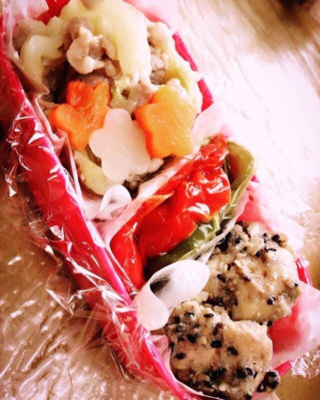 昨日のお弁当🍱❤️ ⭐︎キャベツと豚肉の塩カルビ炒め ⭐︎ピーマンのくたくた煮 ⭐︎ささみのごまみそ和え ・ ・ ・ #料理#お昼ごはん#手作り#お弁当#ランチ#グルメ#クッキングラム#肉#美容#おいしい#花#ピンク#かわいい#ファインダー越しの私の世界#おしゃれ#いいねした人全員フォローする#foodstagram#lunch#lunchbox#cooking#homecooking#japanesefood#f4f#instafood#instagood#beauty#cute#meat