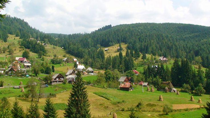 TUDOR PHOTO BLOG: La Fan in Muntii Apuseni,Binding the Hay in Apuseni Mountains,Transylvania,Romania,Europe