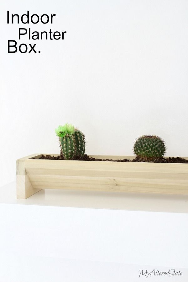 DIY Woodworking Ideas indoor cactus planter box