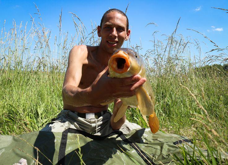 Polderkarpfen Catch & Release