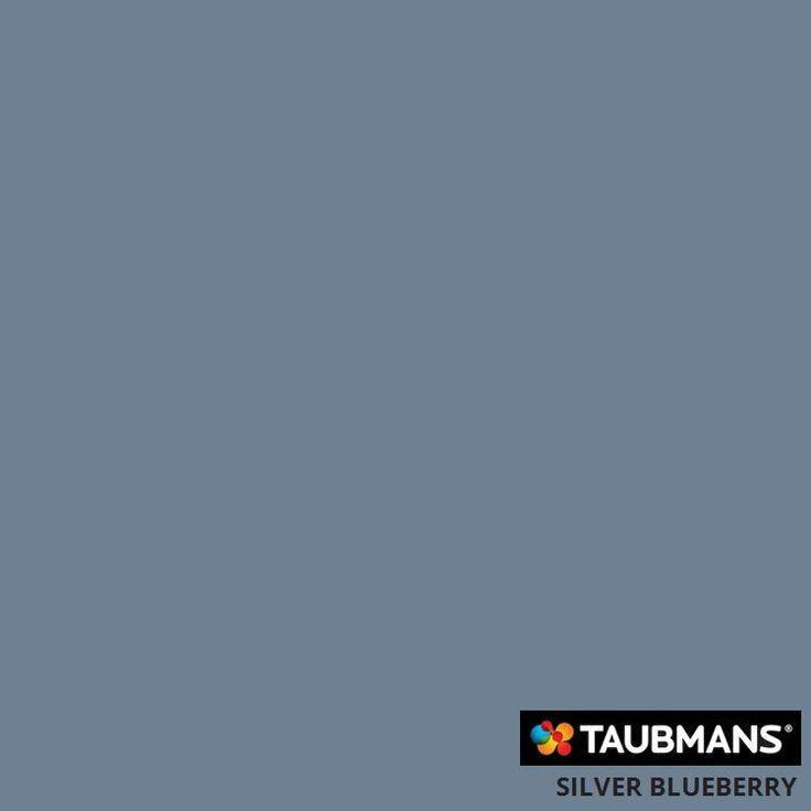 #Taubmanscolour #silverblueberry
