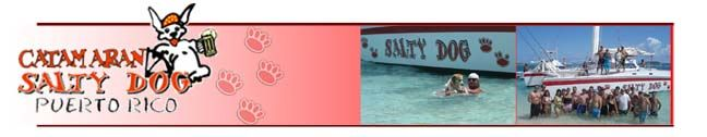 Salty Dog sailing
