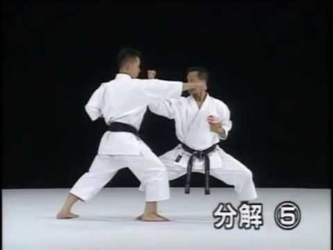 14 best martial arts images on pinterest marshal arts martial jitte shito ryu karate do kata bunkai youtube fandeluxe Image collections