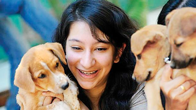 Stressed about board exams? Stroke your pet, advise experts - According to experts, if there is a pet at home, it can be a great stress buster for the student, better than watching TV or playing a video game.