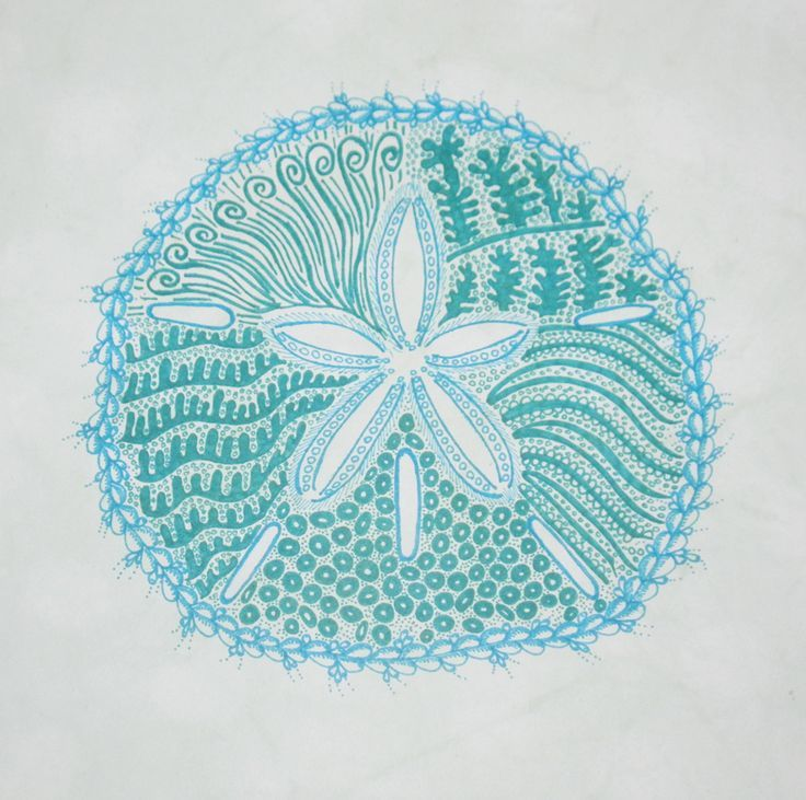 Blue sand dollar illustration - photo#4