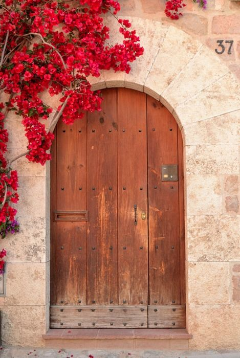 Beautiful Portals--This is quite doable with the arched courtyard gate we already have.  I just need to convince a flowering vine to grow up and over.