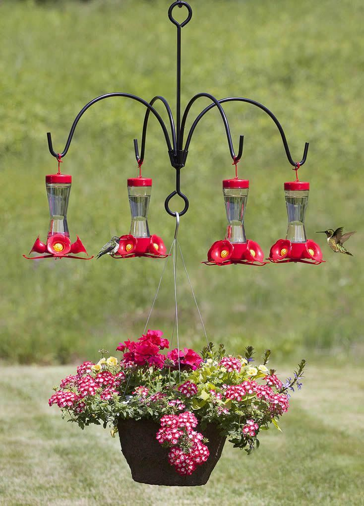 Bird Feeder Hanger Arms Bird Feeders Humming Bird