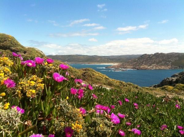 Vista Costa da Morte desde Faro Vilán (Camariñas)