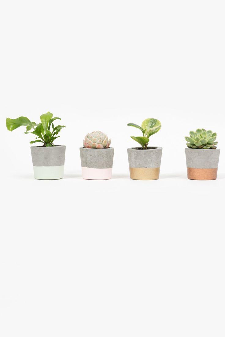 Concrete Pot - Mint Green Dipped - Décor - Home - Superette | Your Fashion Destination.
