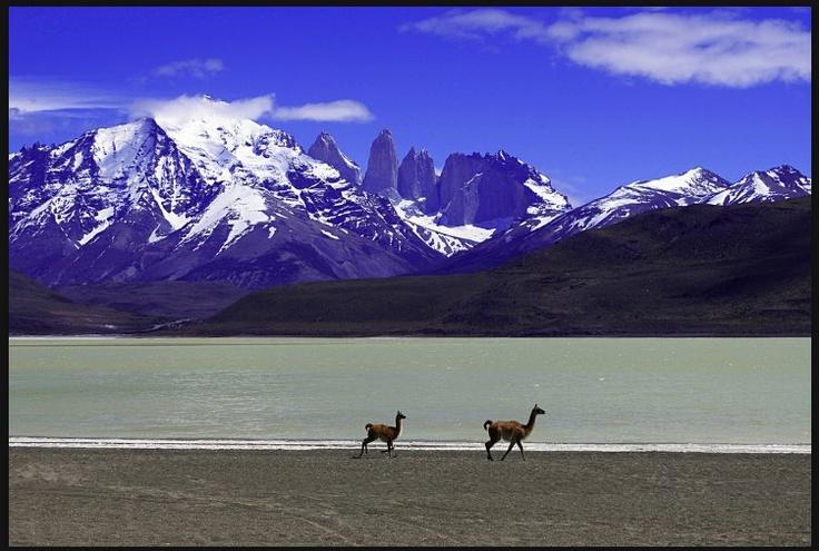 Ultima Esperanza , #Magallanes  #CHILE viaja en www.sinbad.cl