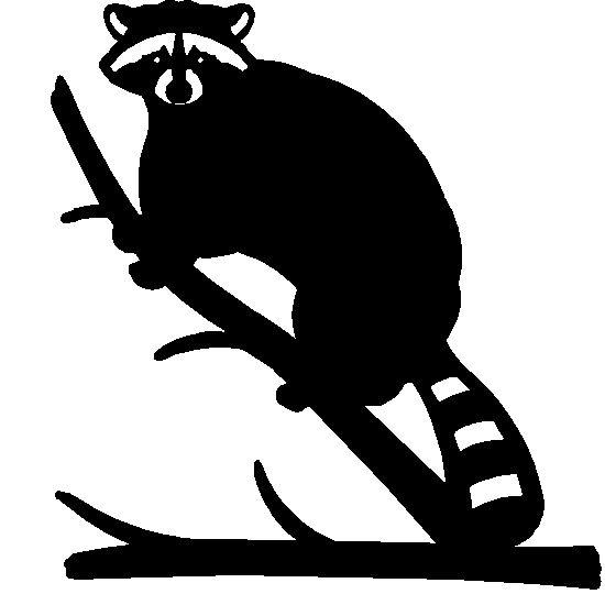 printable raccoon silhouette