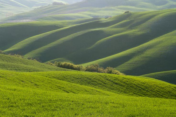 https://flic.kr/p/bzbXp5   Velluto verde toscano - Green tuscan velvet (Maremma, Tuscany, Italy)   Per tutti coloro che vedono questo paesaggio come irreale: questo è un campo coltivato a grano ed il terreno è ondulato naturalmente. Gli agricoltori coltivano egualmente il terreno anche se si può immaginare in una situazione abbastanza pericolosa per la stabilità del trattore. Infatti spesso si ha notizia di ribaltamento di macchine agricole in queste zone, ma la tenacia degli agricoltori è…