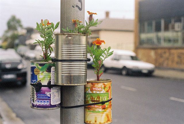 lamp post somewhere in Australia: guerrilla gardening. Photo by Victoria Hannan. http://lost.net.au/vic/page/19/ [Please keep photo credit and original link if reusing or repinning. Thanks!]