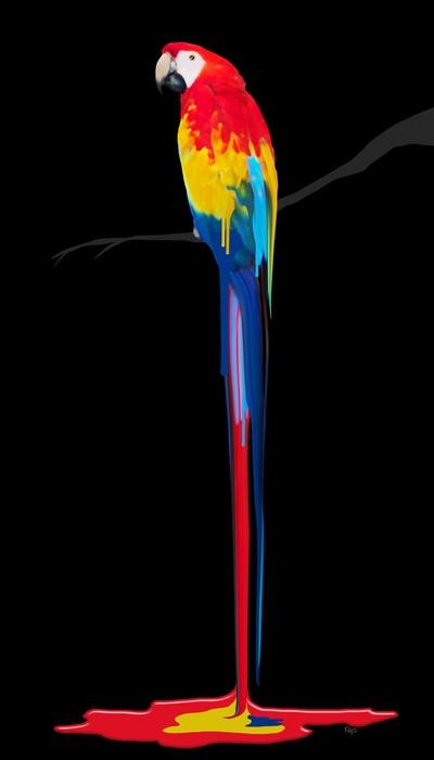 Paint Parrot