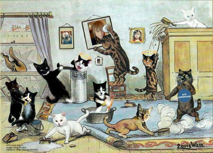 Cleaning day for the Weeti Gang! (Oh look! A pic of me on the wall!)