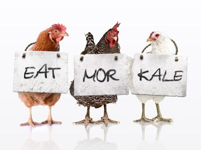Yes, that Patrick NottinghamFood Hangover, Vegan Yummy, Healthy Eating, Eating Kale, Avoid Chicken, Eating Cows, Chicken Stuff, Delicious Food, Eating Mor