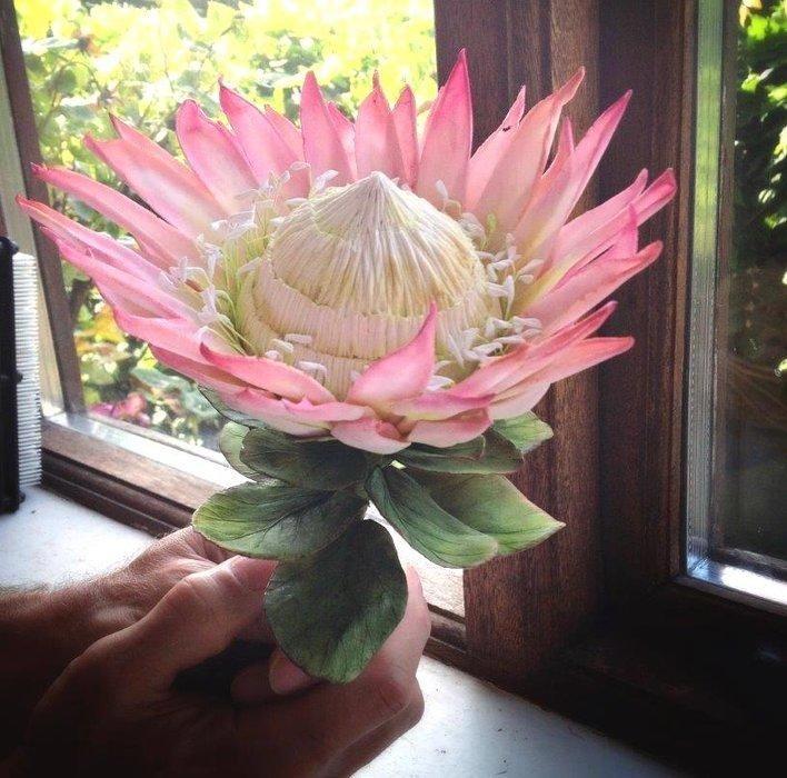 Callicious Cakes | King Protea Sugar Flower