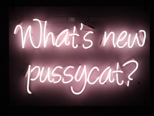 'WHATS NEW PUSSYCAT?' NEON SIGN                      ๑෴MustBaSign෴๑