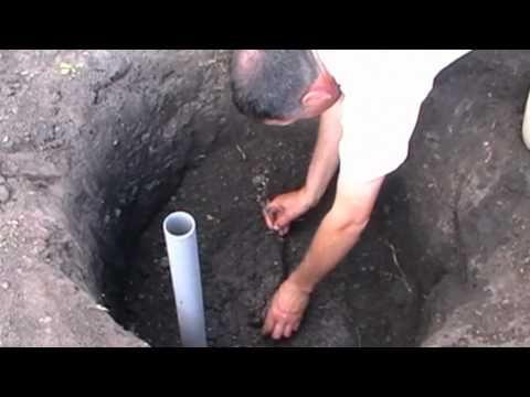 Проверенный способ посадки винограда - YouTube
