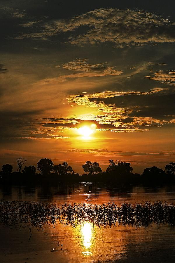 ✯ Fire Of Sunset - Botswanna