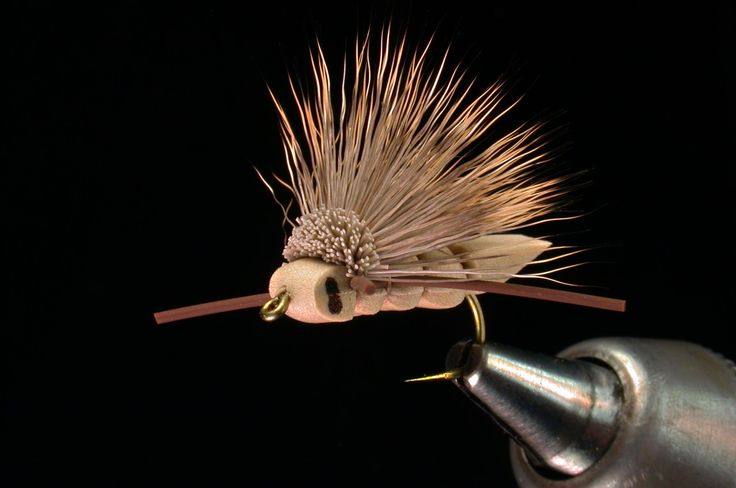 Charlie Boy Hopper - tyed with a foam body and deer or elk hair head and wing.