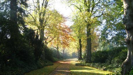 Biddulph Grange Garden, Biddulph, Stoke on Trent, Staffordshire, Cheshire, Congleton