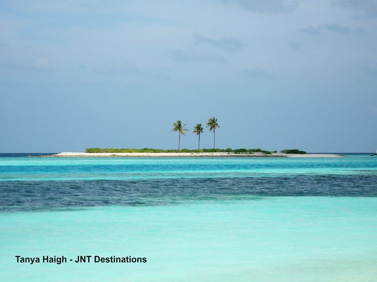 #Paradise #Island #Maldives #Indian #Ocean