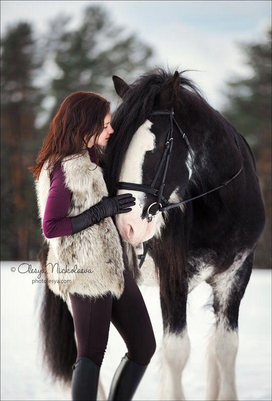Сказочная фотосессия.  Красавец Зак породы клейдесдаль и отважная Галина.) 📸: @olesya_nickolaeva . Фотосессия с лошадьми в  Санкт-Петербу́рге. ---- ☎️:+7(495)908-98-68. ---- Fairytale photoshoot. A handsome Clydesdale horse breed Zack and brave Galina.) 📸: @olesya_nickolaeva. Photoshoot with horses in St. Petersburg. ----