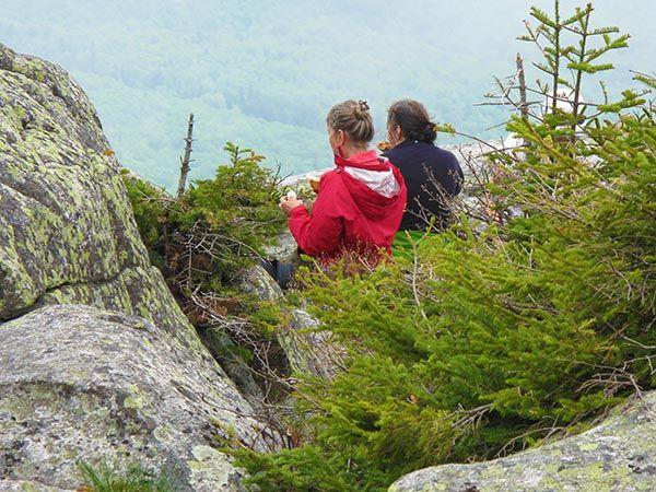 Contemplation du haut du mont Cannon (N.H.) Crédit photo : Anonyme