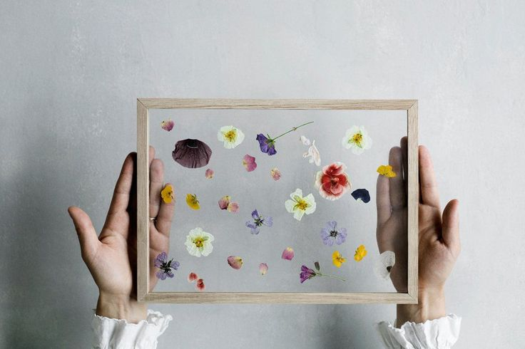 DIY Gift Idea // Minimalist Framed Floating Leaves & Flowers | ...love Maegan