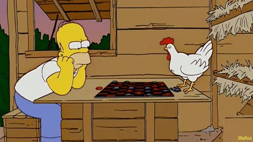 Homer Simpson or A Chicken... who is smarter?