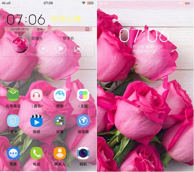 Pink Rose Theme Vivo Themes Itz Pink Rose Flower Flower Meanings Rose Flower