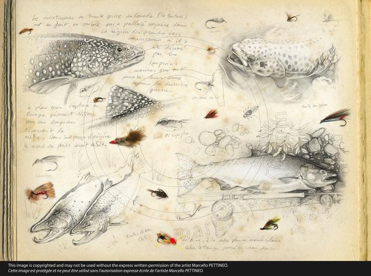 n°35-flyfishing-01                                                                                                                                                                                 Plus