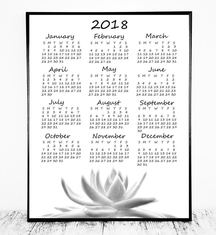 Beautiful Year at a Glance Calendar 2018 Printable with Succulent Photo. Print Large as a Wall Calendar or small and Use as a Desk Calendar. Simple, Affordable & Easy; Just Print! Also Includes 2017 Calendar  After checkout you will be directed to a page to download your files instantly. They will